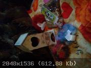 10-1351250110-3880.jpg
