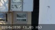 10-1486018722-7253.jpg