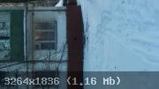 12-1486018985-3616.jpg