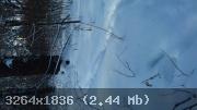 15-1485334899-4115.jpg