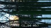 02-1486018894-0401.jpg