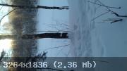 20-1485414549-7803.jpg